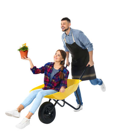 Couple of gardeners with wheelbarrow on white background