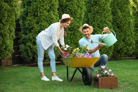 Happy couple working together in green garden