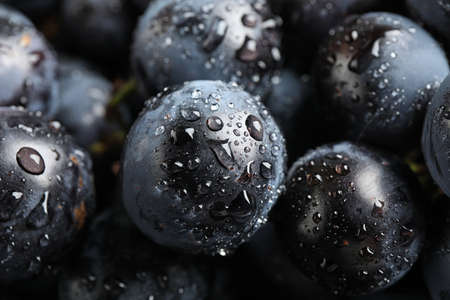 Fresh ripe juicy black grapes as background, closeup view