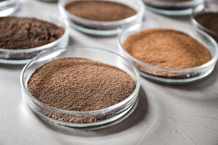Boîtes de Pétri avec des échantillons de sol sur table grise, gros plan. Recherche en laboratoire