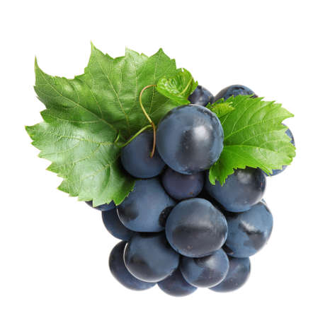 Fresh ripe juicy black grapes isolated on white