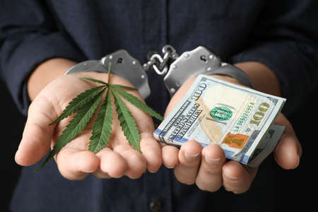 Woman in handcuffs holding hemp leaf and dollars, closeup
