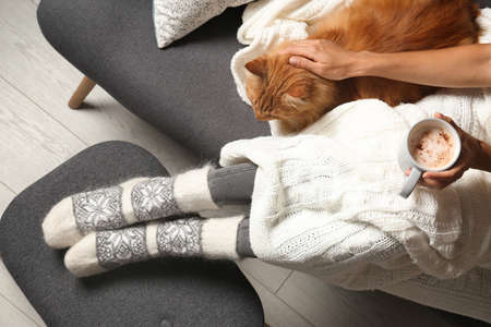 Woman with cute red cat and coffee on grey sofa at home, top view Фото со стока