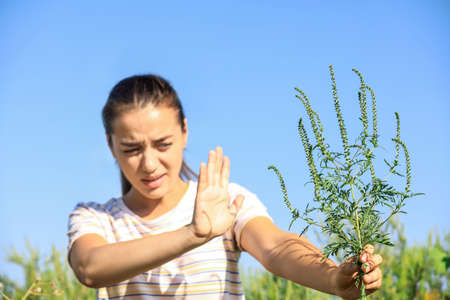 Young woman with ragweed branch suffering from allergy outdoors, focus on hand Stock Photo