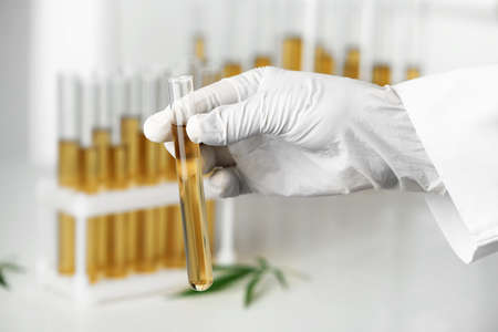 Doctor holding test tube with urine sample for hemp analysis, closeup Reklamní fotografie