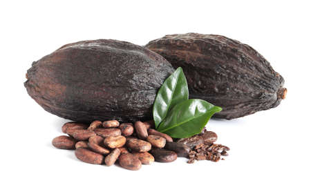 Cocoa beans, pods and leaves isolated on white 免版税图像