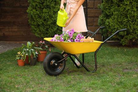 Young woman watering plants in garden, closeup