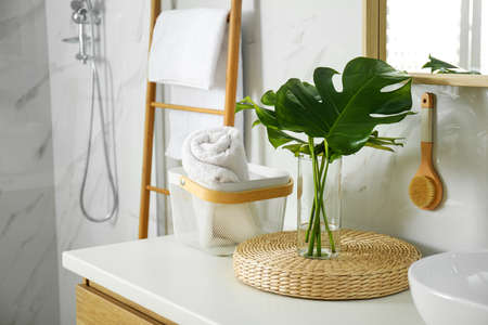 Tropical monstera leaves in stylish bathroom interior