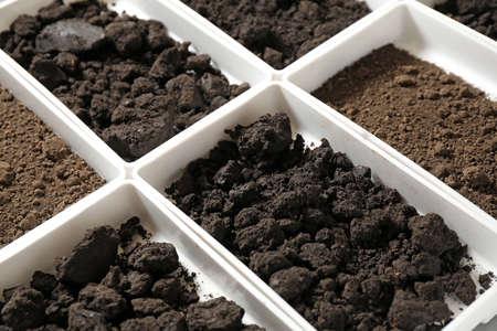 Contenedores con muestras de suelo, primer plano. Investigación de laboratorio