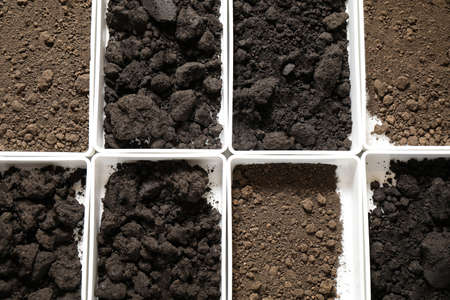 Containers with soil samples, top view. Laboratory research