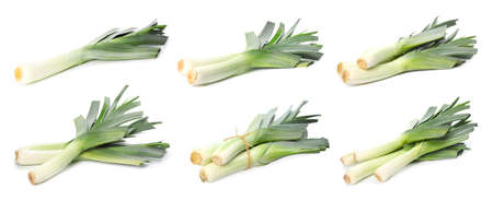 Set of fresh raw leeks on white background. Ripe onions