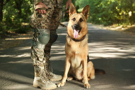 Man in military uniform with German shepherd dog outdoors, closeup view