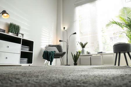 Schöne tropische Pflanzen mit üppigen Blättern im stilvollen Wohnzimmerinterieur, niedriger Betrachtungswinkel