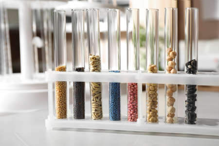Test tubes with seeds samples on stone table in laboratory