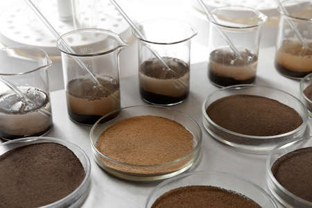 Glassware with soil samples and extracts on light table. Laboratory research