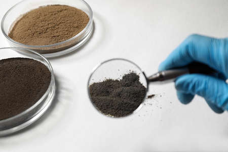 Scientist examining soil sample with magnifier at table, closeup. Laboratory research