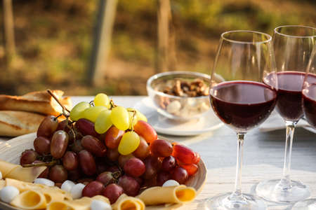 Red wine and snacks served for picnic on white wooden table outdoors Stok Fotoğraf