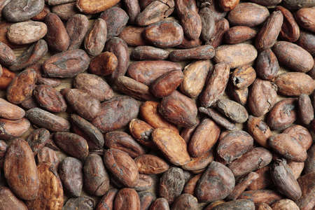 Tasty cocoa beans as background, top view