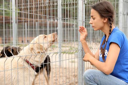 Bénévole près d'une cage à chien dans un refuge pour animaux à l'extérieur