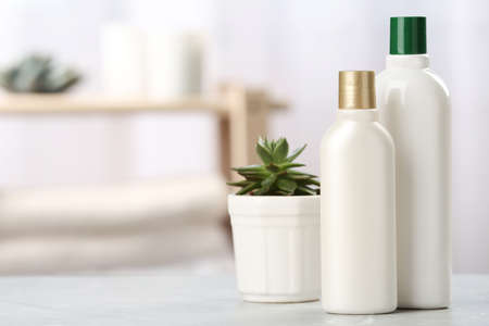 Bottles with hair care cosmetics and succulent on table in bathroom, space for text