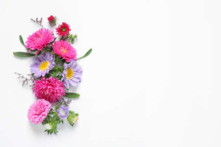 Composition with beautiful aster flowers on white background, top view