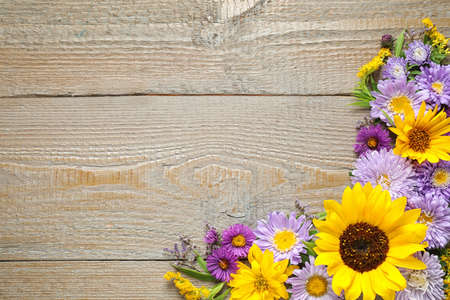 Flat lay composition with beautiful asters and sunflowers on wooden table. Space for text