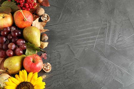 Autumn fruits and vegetables on grey background, flat lay with space for text. Happy Thanksgiving day Stockfoto