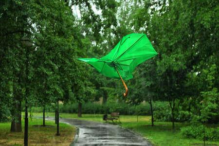 Broken green umbrella in park on rainy day