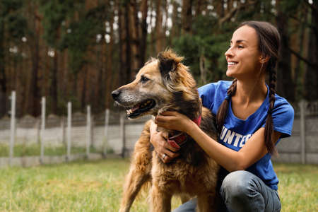 Female volunteer with homeless dog at animal shelter outdoors Imagens