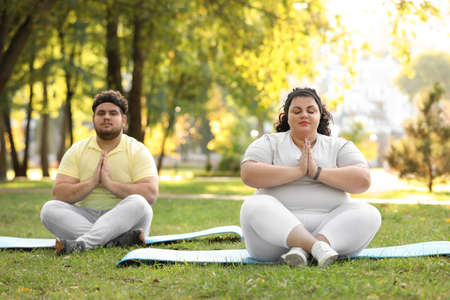 Overweight couple training together in park on sunny day Banque d'images