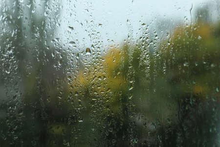 Rain drops on window glass as background, closeup Stok Fotoğraf