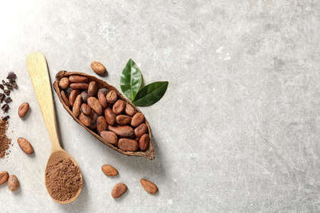 Cocoa pod, beans and powder on light table, flat lay. Space for text