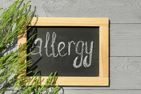 Ragweed plant (Ambrosia genus) and chalkboard with word ALLERGY on light wooden background, flat lay