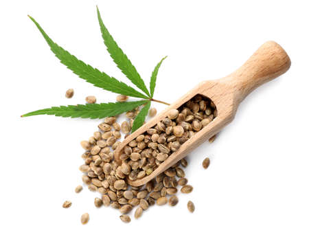 Wooden scoop with hemp seeds and leaf on white background, top view