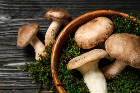 Flat lay composition with fresh wild mushrooms on black wooden table