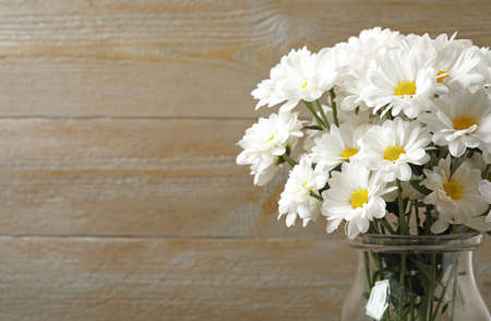 Beautiful white chrysanthemum flowers in glass vase on background. Space for text