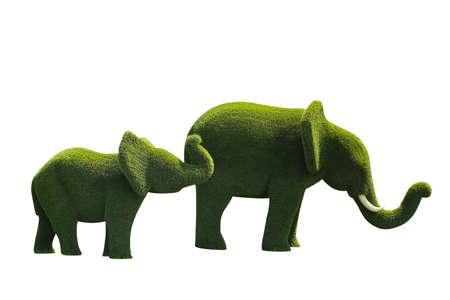 Beautiful elephant shaped topiaries isolated on white. Landscape gardening