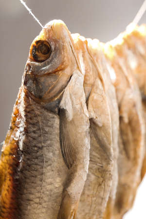 Dried fish hanging on rope, closeup view