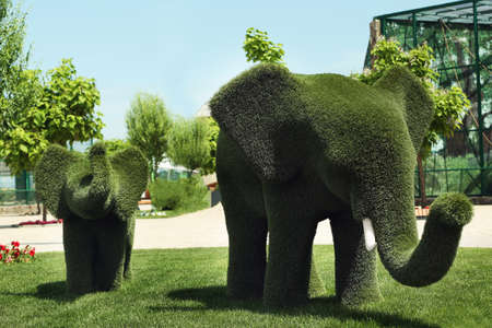 Beautiful elephant shaped topiaries at zoo on sunny day. Landscape gardening