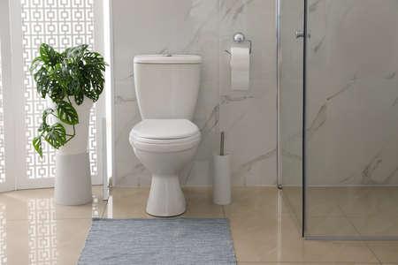 Toilet bowl near shower stall in modern bathroom Stok Fotoğraf