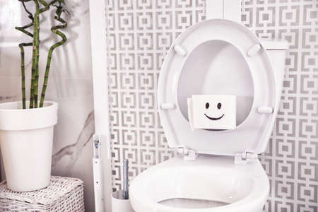 Roll of paper with funny face on toilet seat in bathroom