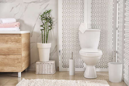 Modern toilet bowl with roll of paper in bathroom Stok Fotoğraf