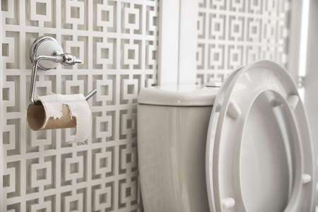 Toilet and holder with empty paper roll in bathroom