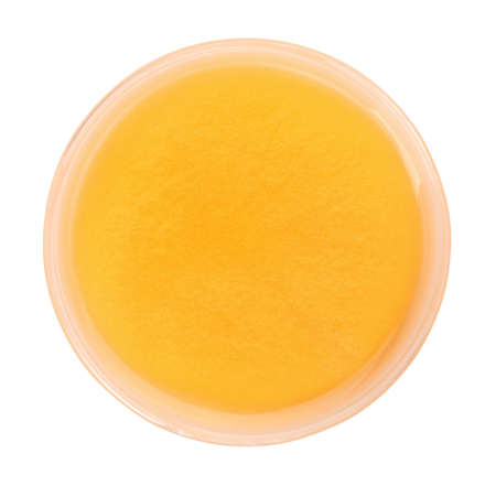 Orange slime in plastic container isolated on white, top view. Antistress toy