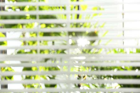 Blurred view through window on garden in morning