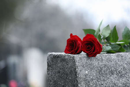 Red roses on grey granite tombstone outdoors. Funeral ceremony