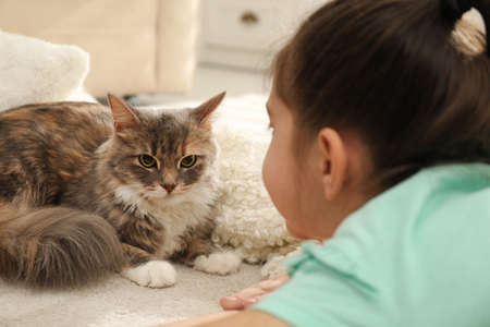 Cute little girl with cat lying on carpet at home, closeup. First pet