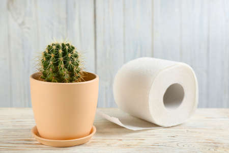 Cactus and roll of toilet paper on white wooden table. Hemorrhoid problems