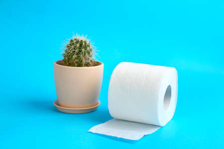 Roll of toilet paper and cactus on light blue background. Hemorrhoid problems