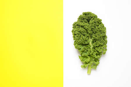 Fresh kale leaf on color background, top view. Space for text